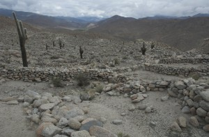 Ancient ruins along the Tren to the Clouds