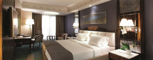 A standard award redemption at the Radisson Blu Pera Istanbul